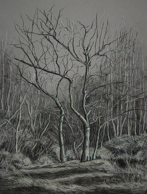 Tn Drawing - Trees Along The Greenway by Janet Felts