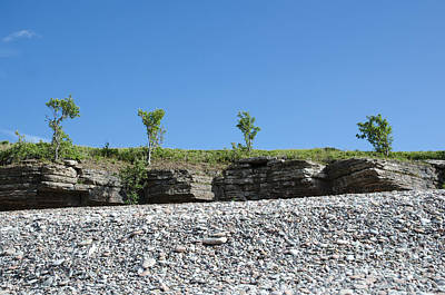 Sweden Photograph - Trees At The Frontline Of Cliffs By A Coast With Pebbles by Kennerth and Birgitta Kullman