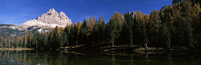 Trees At The Lakeside, Lake Misurina Print by Panoramic Images