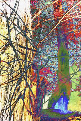 Igor Baranov Photograph - Trees by Igor Baranov