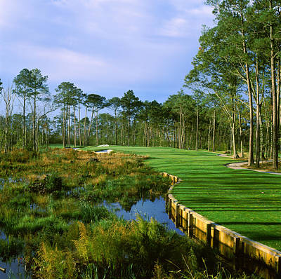 Urban Scenes Photograph - Trees In A Golf Course, Kilmarlic Golf by Panoramic Images