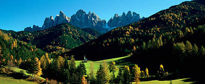 Dolomite Photograph - Trees On A Landscape, Dolomites, Funes by Panoramic Images