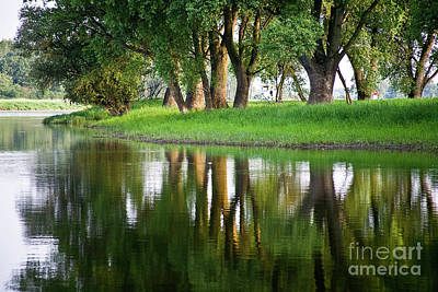 Trees Reflection On The Lake Print by Heiko Koehrer-Wagner