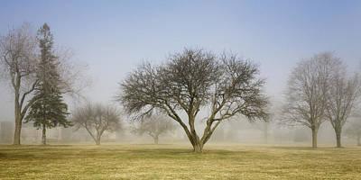 Trees Shrouded In Mist In Springtime Print by Mary Ellen McQuay
