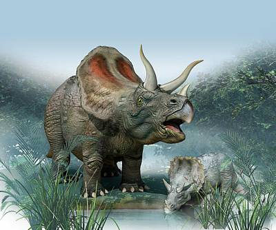 Triceratops Old And Young Print by Mikkel Juul Jensen