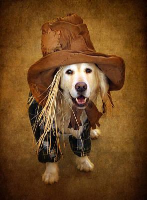Cute Dog Digital Art - Trick Or Treat by Jessica Jenney