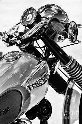 Triumph Tiger Monochrome Print by Tim Gainey