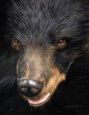 Trixie Moon Bear - In Support Of Animals Asia Print by David Stribbling