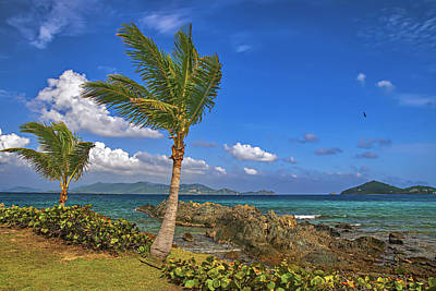 Photograph - Tropical Afternoon by Island Photos