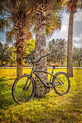 Beach Cruiser Photograph - Tropical Bicycle by Debra and Dave Vanderlaan
