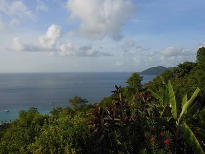 Photograph - Tropical Island Rain Forest Paradise by