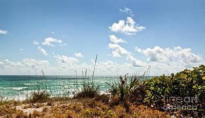 Tropical Shore Print by Michelle Wiarda