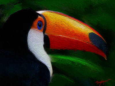 Toucan Mixed Media - Tropical Toucan  by Anthony Fishburne