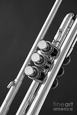 Trumpet Photograph - Trumpet Valves In Black And White Sepia 3017.01 by M K  Miller