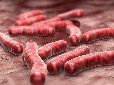 3d Artwork Photograph - Tuberculosis Bacteria by Harvinder Singh