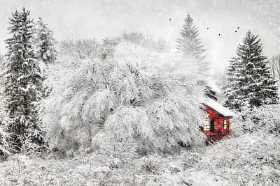Snowy Digital Art - Tucked Away by Lori Deiter