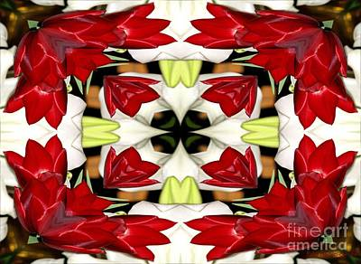 Flower Photograph - Tulip And Easter Lily Abstract by Rose Santuci-Sofranko