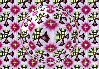 Tulip Kaleidoscope Under Glass Print by Rose Santuci-Sofranko