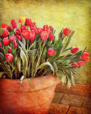 Terra Cotta Digital Art - Tulip Tumble by Nikolyn McDonald