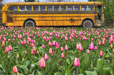 School Bus Photograph - Tulips And Old Bus by Mark Kiver