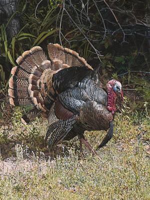 Turkey In The Weeds Original by Joshua Martin