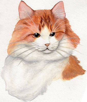 Turkish Van Cat Painting - Turkish Van by Stephanie Arbore