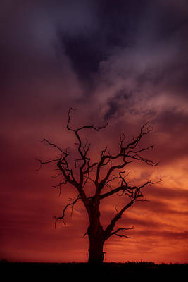 Turning Light Into Dark Print by Chris Fletcher