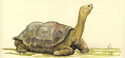 Turtle Galapagos Print by Juan  Bosco