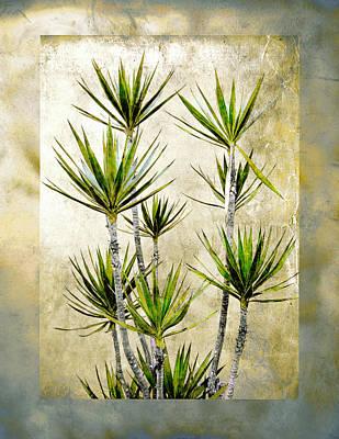 Twiggy Palm Print by Stephen Warren