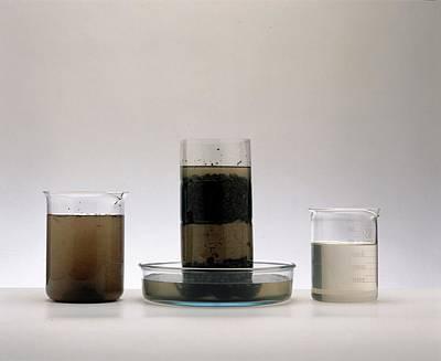 Water Jars Photograph - Two Beakers by Dorling Kindersley/uig