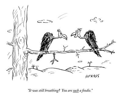 Vulture Drawing - Two Buzzards Sit And Talk On A Branch by David Sipress