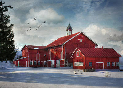 Old Barns Digital Art - Two By Two by Lori Deiter