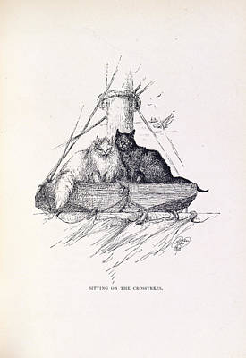 Of Cats Photograph - Two Cats by British Library