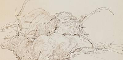 Wilderness Drawing - Two Dead Stags by Sir Edwin Landseer