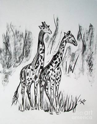 Isolated On White Mixed Media - Two Giraffe's In Graphite by Janice Rae Pariza