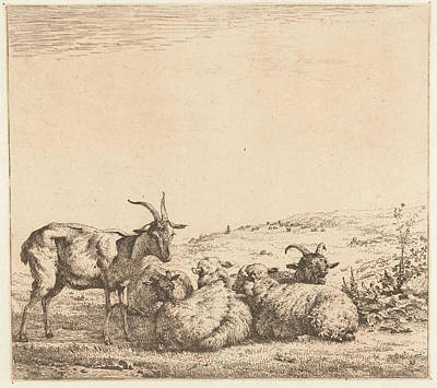 Goat Drawing - Two Goats And Three Sheep, Karel Dujardin by Karel Dujardin