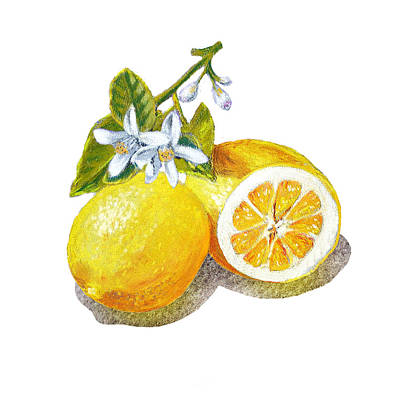 Two Happy Lemons Print by Irina Sztukowski
