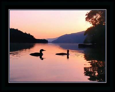 Loon Digital Art - Two Loons On Lake George by Linda Seifried