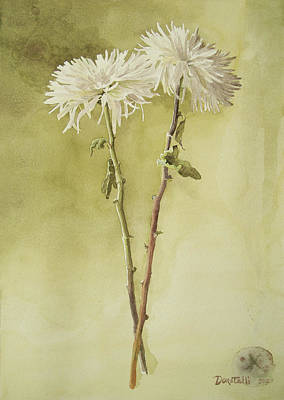 Mums Painting - Two White Mums by Kathryn Donatelli