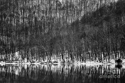 Fall Photograph - Tygart Valley River D30009161bw by Kevin Funk