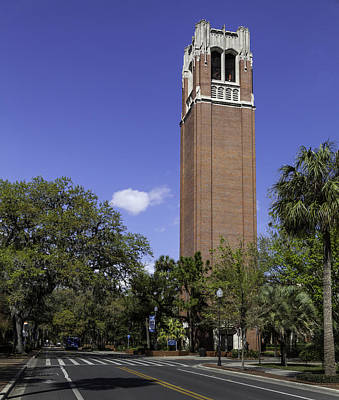 Uf Century Tower And Newell Drive Print by Lynn Palmer