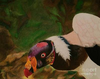 Vulture Drawing - Ugliful by Ambre Wallitsch
