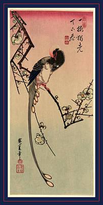Magpies Drawing - Ume Ni Onagadori by Utagawa Hiroshige Also And? Hiroshige (1797-1858), Japanese
