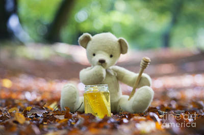 Contemplating Photograph - Ummmm Honey  by Tim Gainey