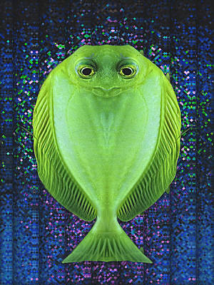 Uncle Fish Drops By For Dinner Print by Wendy J St Christopher