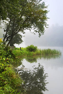 Under A Tree By The Lake Foggy Morning Landscape Original by Christina Rollo