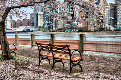 New York City Skyline Photograph - Under The Cherry Tree by JC Findley