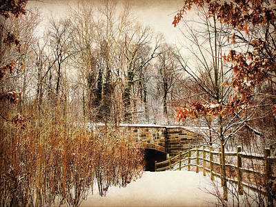 Winter Trees Digital Art - Underhill Crossing by Jessica Jenney