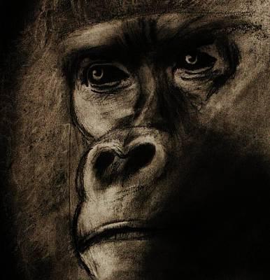 Gorilla Drawing - Understanding by Michael Cross