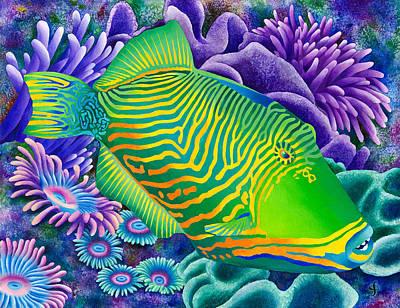 Undulated Trigger Fish Print by Carolyn Steele